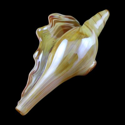 Conch Glass Pipe