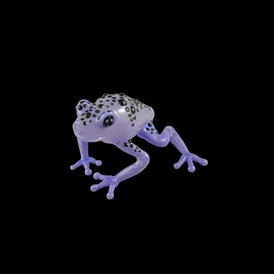 Poison Dart Frog Glass Pipe