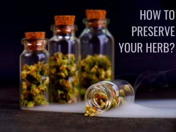 How To Preserve & Store Your Herb